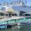 A découvrir : Musée des Confluences